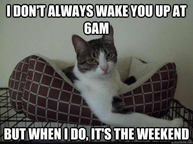 I don't always wake you up at 6am but when I do, it's the weekend  Most interesting cat in the world