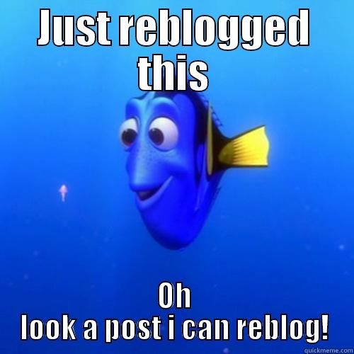 In the tumblr - JUST REBLOGGED THIS OH LOOK A POST I CAN REBLOG! dory