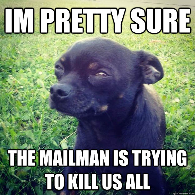 Im pretty sure The mailman is trying to kill us all - Im pretty sure The mailman is trying to kill us all  Skeptical Dog
