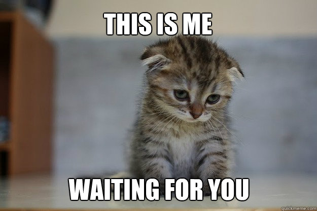 dc5a35df1404c1f68e11a07e27b1f239b51fbd08c9c6cdbfaae858750645e281 this is me waiting for you sad kitten quickmeme