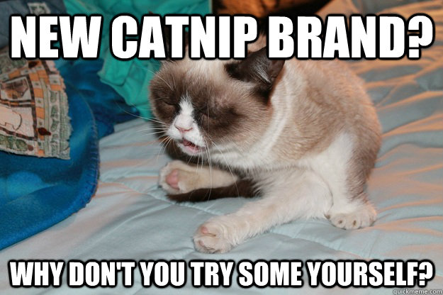 New catnip brand? Why don't you try some yourself? - New catnip brand? Why don't you try some yourself?  New Catnip for Grumpy Cat