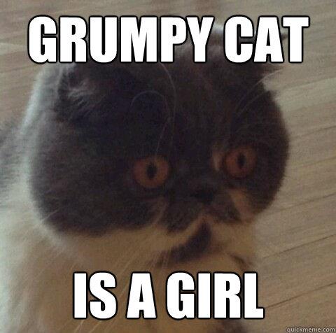 Grumpy Cat Is a girl