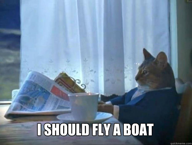 I should fly a boat -  I should fly a boat  Average Dad Cat