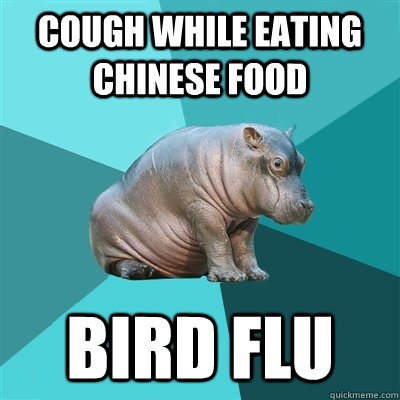 Cough while eating chinese food Bird Flu  Hypochondriac Hippo