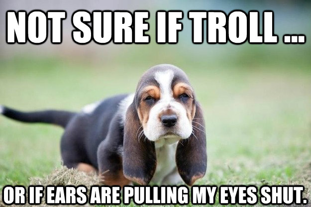 Not sure if troll ... or if ears are pulling my eyes shut. - Not sure if troll ... or if ears are pulling my eyes shut.  wienertroll