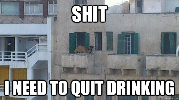 Shit I need to quit drinking - Shit I need to quit drinking  Misc