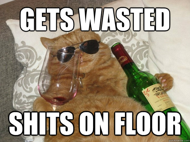 Gets wasted shits on floor
