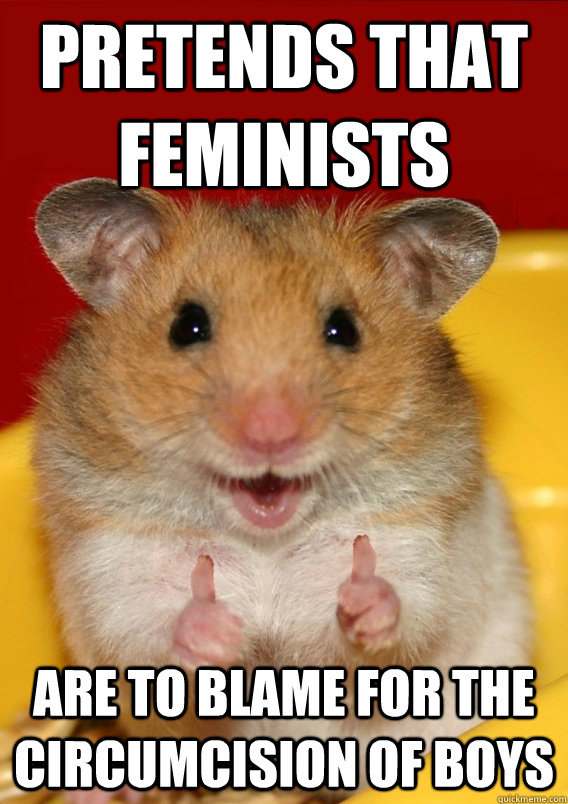 pretends that feminists are to blame for the circumcision of boys - pretends that feminists are to blame for the circumcision of boys  Rationalization Hamster