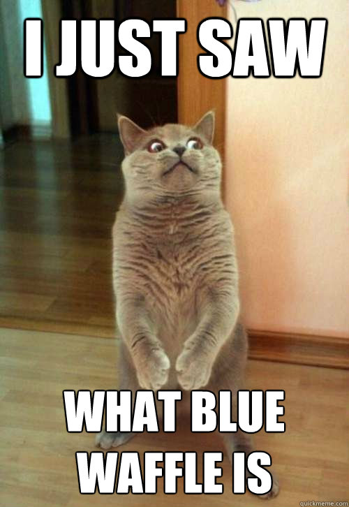 I just saw what blue waffle is - I just saw what blue waffle is  Horrorcat