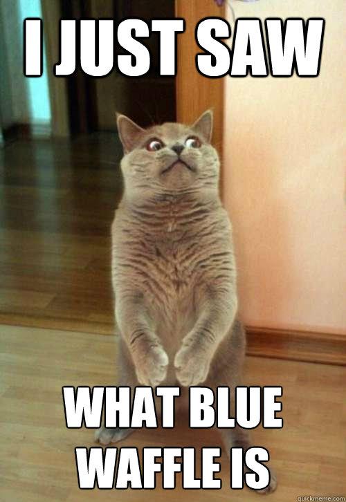 recipe: blue waffles meme [22]