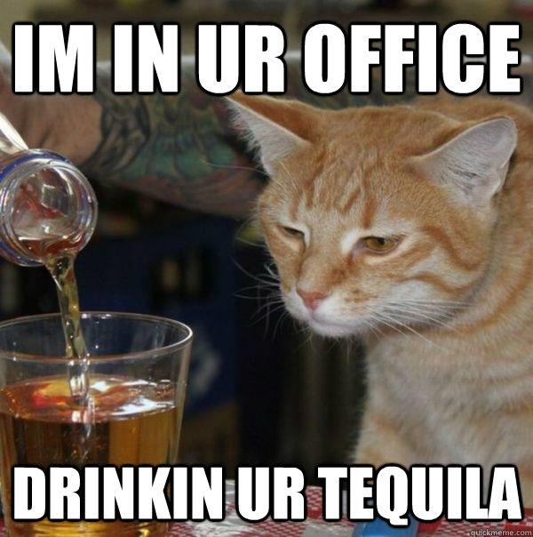 IM IN UR OFFICE DRINKIN UR TEQUILA