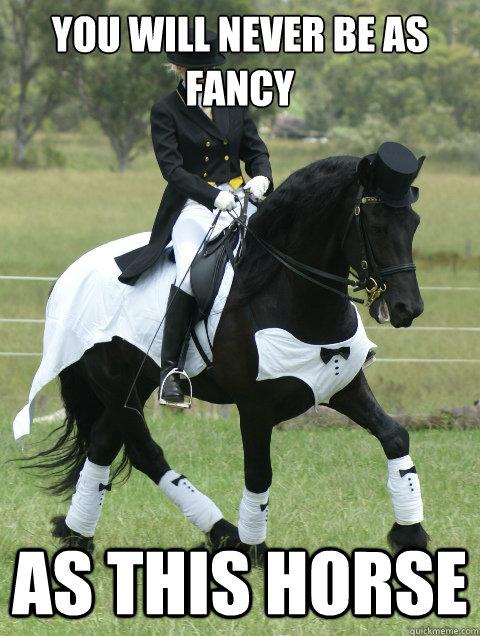 dda8d18b28dce44b63c14751fd9e7acde1b731992d7b9c9f5ec6668000b24ce7 fancy horse memes quickmeme