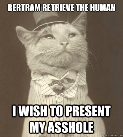 Bertram retrieve the human I wish to present my asshole - Bertram retrieve the human I wish to present my asshole  Aristocat
