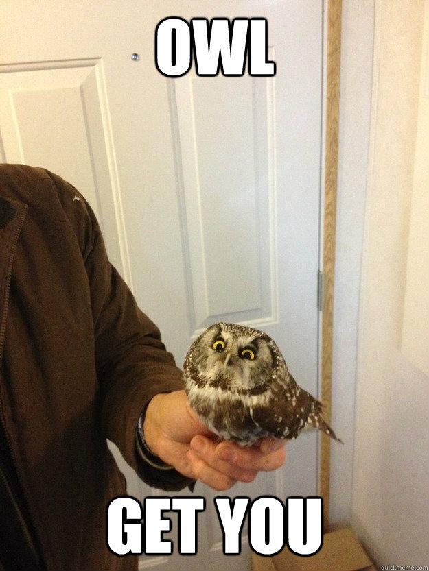 Owl get you - Owl get you  Vengeful Owl