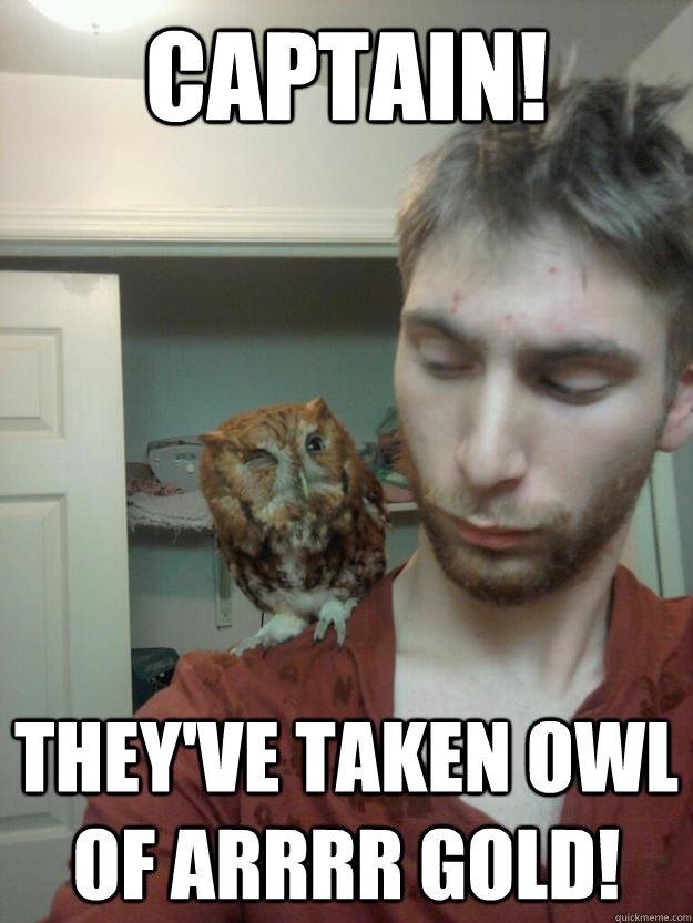 Captain Theyve Taken Owl Of Arrrr Gold First Mate Hooty Quickmeme