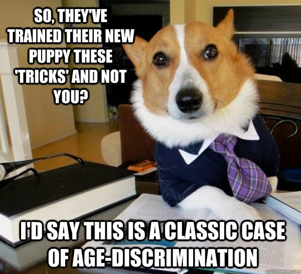 So, they've trained their new puppy these 'tricks' and not you? I'd say this is a classic case of age-discrimination - So, they've trained their new puppy these 'tricks' and not you? I'd say this is a classic case of age-discrimination  Lawyer Dog