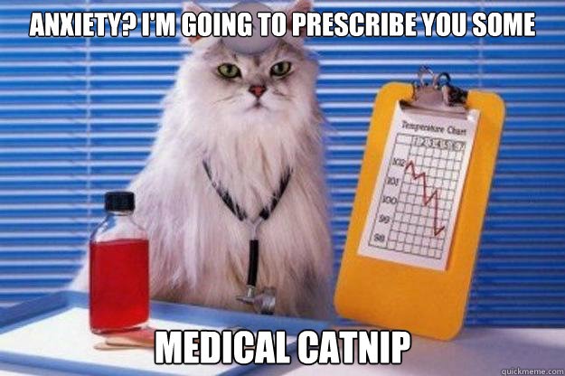 dddcd112c133a407d6bc54f0d3c24f5db10020139a50bc0e73a8c6bbbbc50ddb anxiety? i'm going to prescribe you some medical catnip doctor