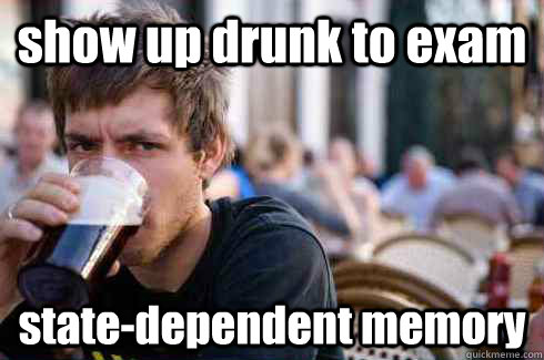 show up drunk to exam state-dependent memory - show up drunk to exam state-dependent memory  Lazy College Senior