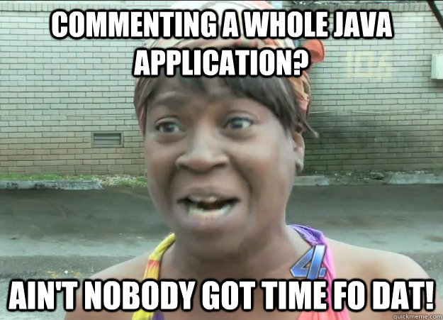 Commenting a whole java application? Ain't nobody got time fo dat!