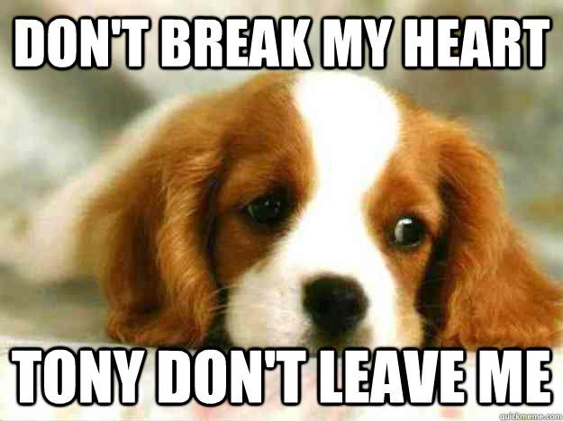 Don't Break My Heart Tony Don't leave me - Don't Break My Heart Tony Don't leave me  Sad Dog