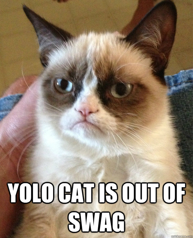 YOLO cat is out of swag -  YOLO cat is out of swag  Grumpy Cat
