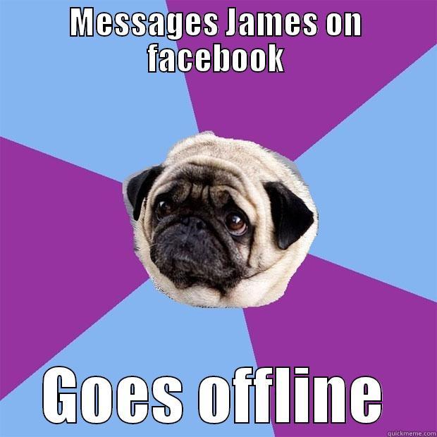 MESSAGES JAMES ON FACEBOOK GOES OFFLINE Lonely Pug