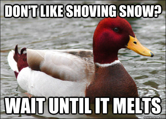 Don't like shoving snow? Wait until it melts - Don't like shoving snow? Wait until it melts  Malicious Advice Mallard