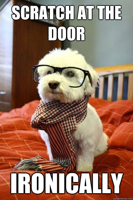 Scratch at the door ironically - Scratch at the door ironically  Hipster Dog