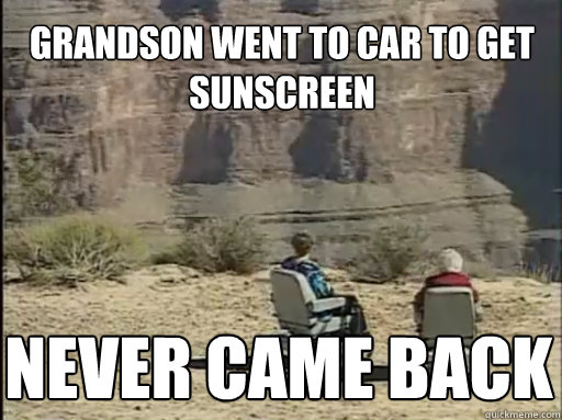Grandson went to car to get sunscreen Never came back - Grandson went to car to get sunscreen Never came back  Hoveround Grandma