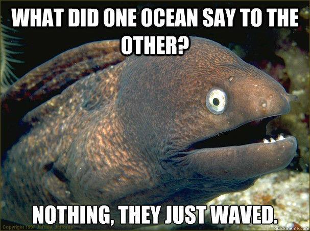What did one ocean say to the other? nothing, they just waved. - What did one ocean say to the other? nothing, they just waved.  Bad Joke Eel