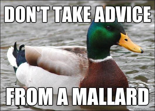 Don't take advice from a mallard - Don't take advice from a mallard  Actual Advice Mallard