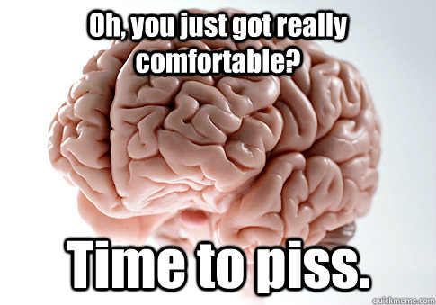 Oh, you just got really comfortable? Time to piss. - Oh, you just got really comfortable? Time to piss.  Scumbag Brain