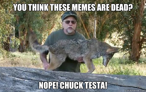 You think these memes are dead?  NOPE! chuck testa!