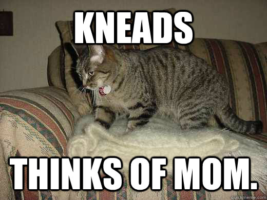 KNEADS THINKS OF MOM.
