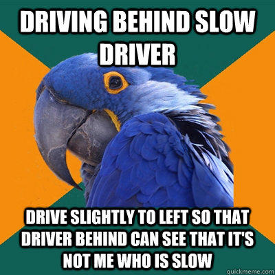 DRIVING BEHIND SLOW DRIVER DRIVE SLIGHTLY TO LEFT SO THAT DRIVER BEHIND CAN SEE THAT IT'S NOT ME WHO IS SLOW - DRIVING BEHIND SLOW DRIVER DRIVE SLIGHTLY TO LEFT SO THAT DRIVER BEHIND CAN SEE THAT IT'S NOT ME WHO IS SLOW  Paranoid Parrot