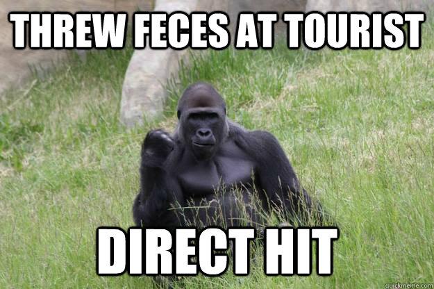 threw feces at tourist direct hit