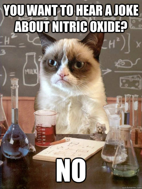 You want to hear a joke about Nitric Oxide? NO - You want to hear a joke about Nitric Oxide? NO  Misc