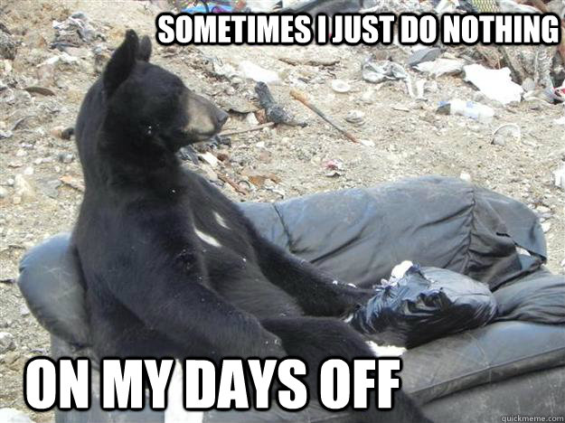 Funny Meme Day Off : Couch bear memes quickmeme