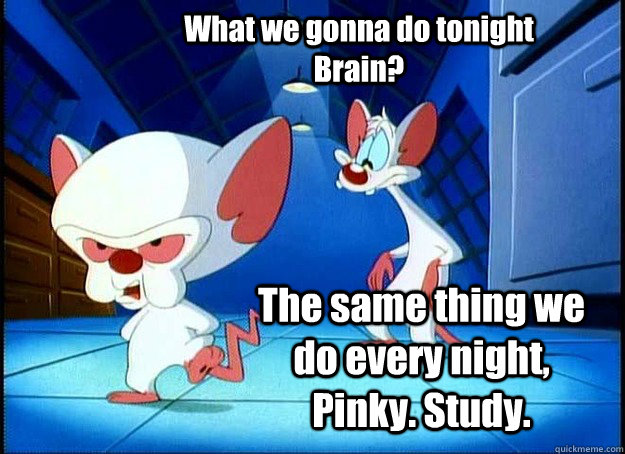 What we gonna do tonight Brain? The same thing we do every night, Pinky. Study. - What we gonna do tonight Brain? The same thing we do every night, Pinky. Study.  Pinky and the Brain