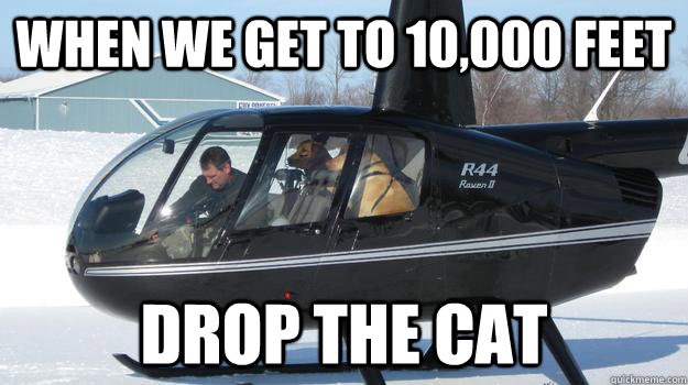 When we get to 10,000 feet drop the cat - Helicopter Dogs ...