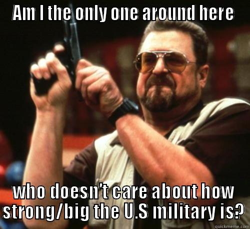 U.S Military - AM I THE ONLY ONE AROUND HERE WHO DOESN'T CARE ABOUT HOW STRONG/BIG THE U.S MILITARY IS? Am I The Only One Around Here