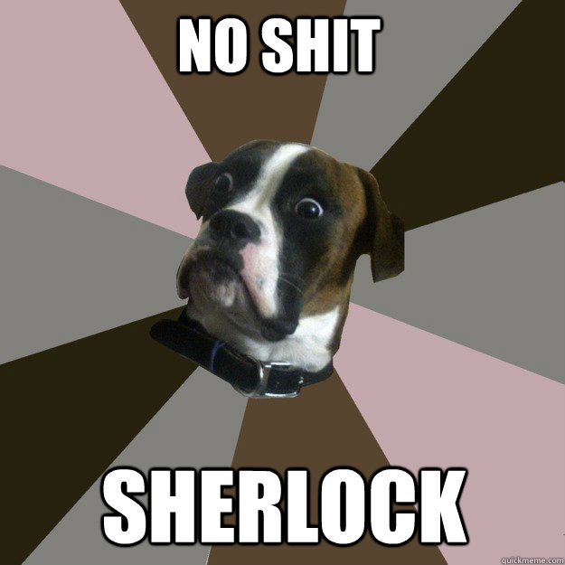 No Shit  Sherlock  Genuinely Surprised Dog