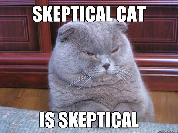 Image Gallery Skeptical Meme - 71.8KB