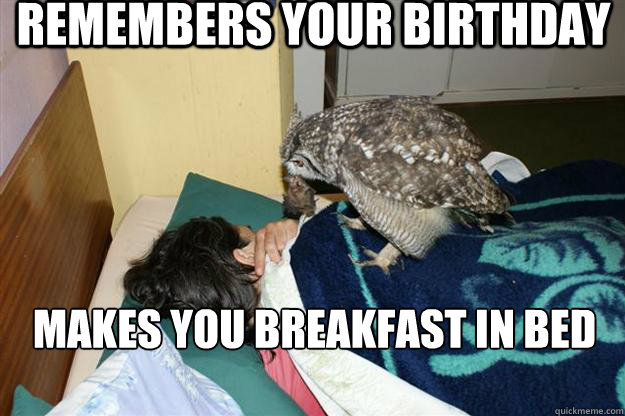 df33c99d4ca03a5c19d3b66812dbe2ea95a39522162aa5e3c78009df938d6be3 remembers your birthday makes you breakfast in bed good guy owl
