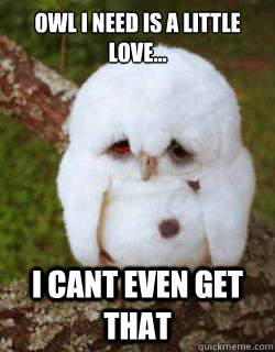 Owl i need is a little love... I cant even get that