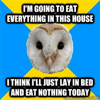 i'm going to eat everything in this house i think i'll just lay in bed and eat nothing today