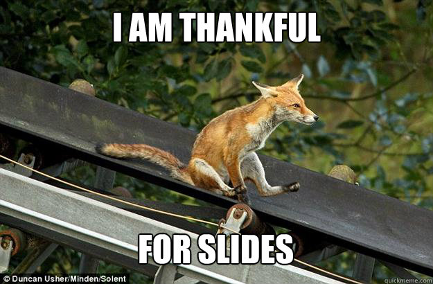 df72ac2b2c79f44b3aa94201ea271e341ec4149537b4bc8abde8fa6a63b225be i am thankful for slides not a single fox was given quickmeme