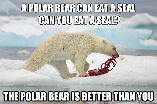 A Polar Bear Can Eat A Seal Can You Eat A Seal The Polar Bear Is
