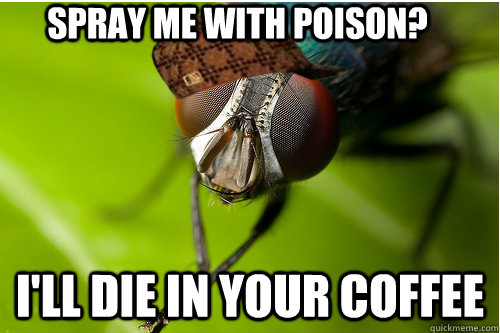spray me with poison? I'll die in your coffee - spray me with poison? I'll die in your coffee  Scumbag Fly