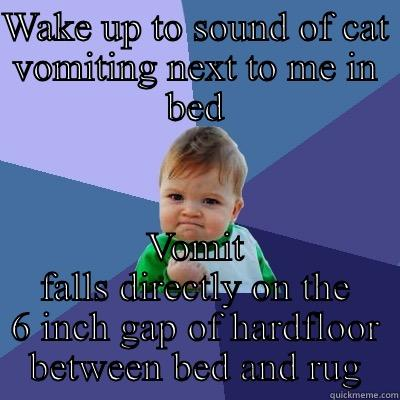 Cat vomit - WAKE UP TO SOUND OF CAT VOMITING NEXT TO ME IN BED VOMIT FALLS DIRECTLY ON THE 6 INCH GAP OF HARDFLOOR BETWEEN BED AND RUG Success Kid